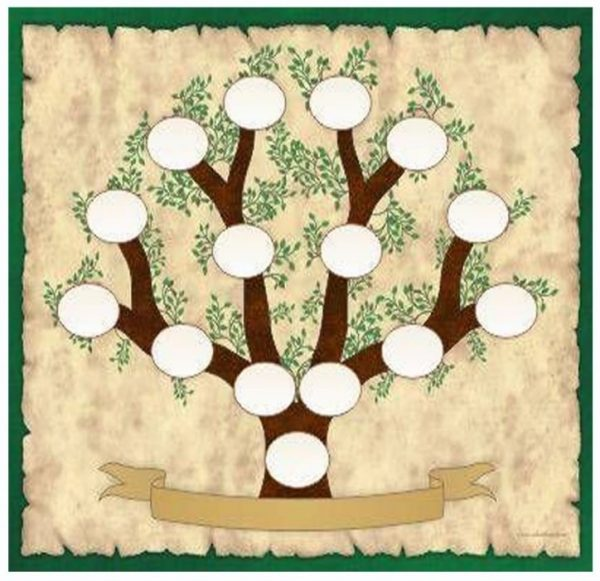 Árbol genealógico Archivo actividad infantil