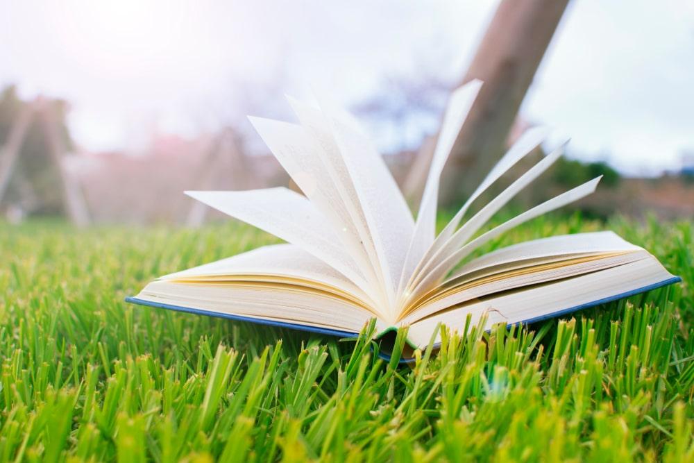 ¿Aún no sabes qué #leer este #verano?… ¡Déjate aconsejar por el #baratzteam!