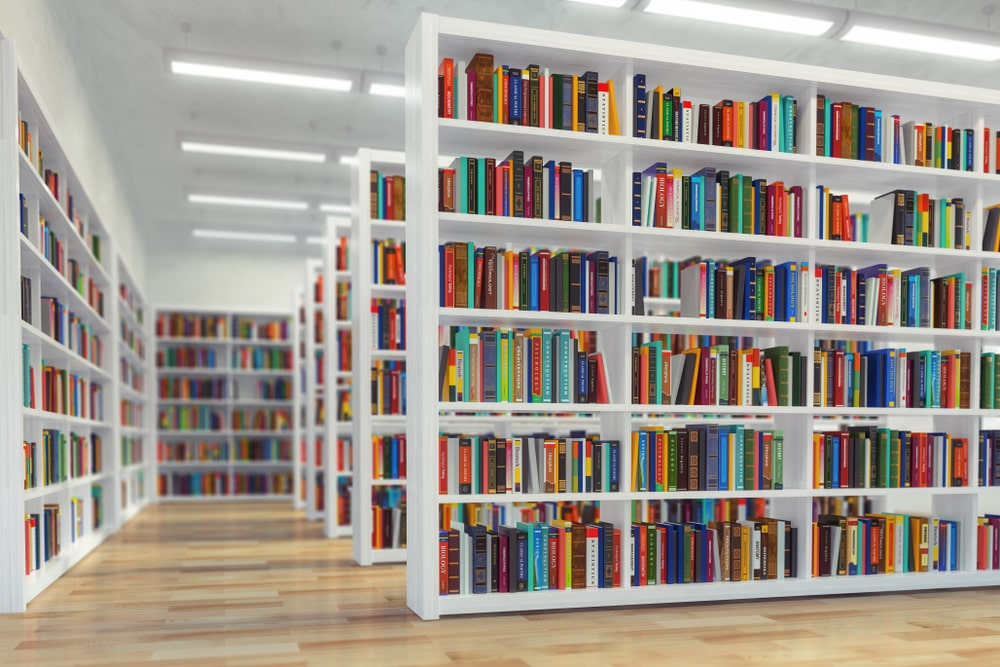 La biblioteca es inclusión social e igualdad de oportunidades