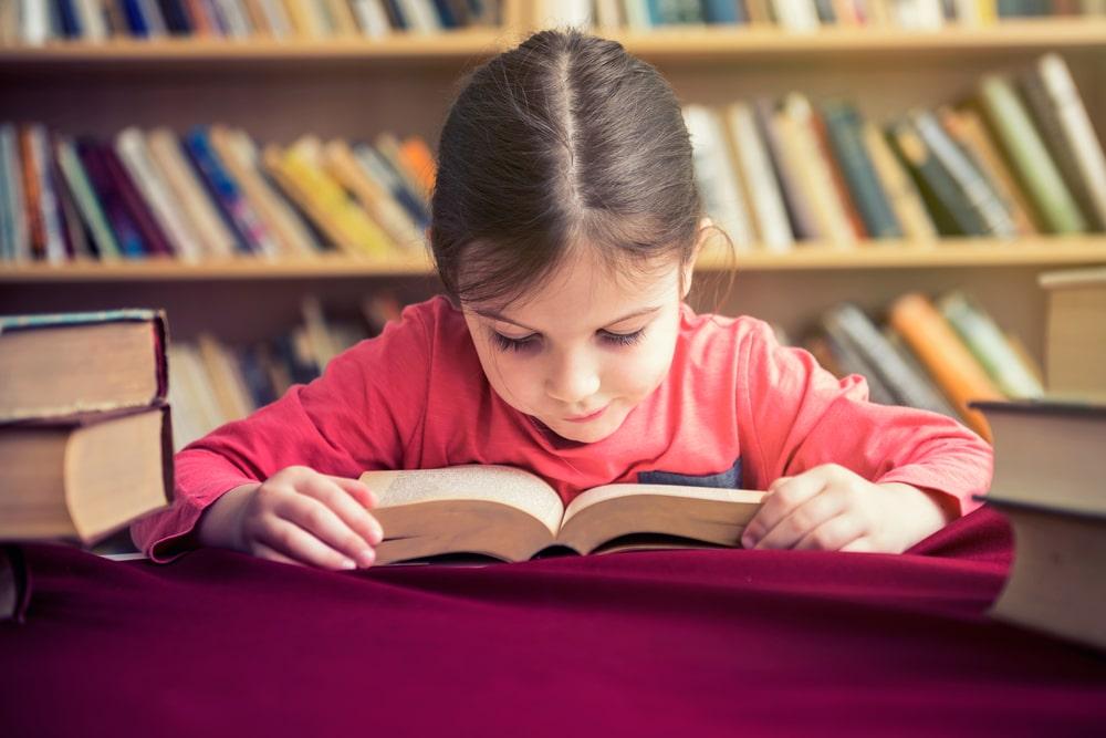 Las bibliotecas escolares son una herramienta necesaria e imprescindible al servicio de las distintas comunidades educativas