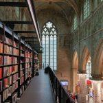 Los distintos tipos de bibliotecas especializadas y sus posibles subdivisiones