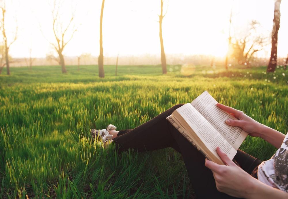 Libros recomendados baratz primavera