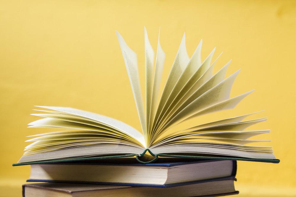 Los vallisoletanos ya pueden disfrutar de las 317 bibliotecas integradas en RABEL