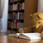 Los peluches se pueden quedar a dormir en la biblioteca por una buena causa