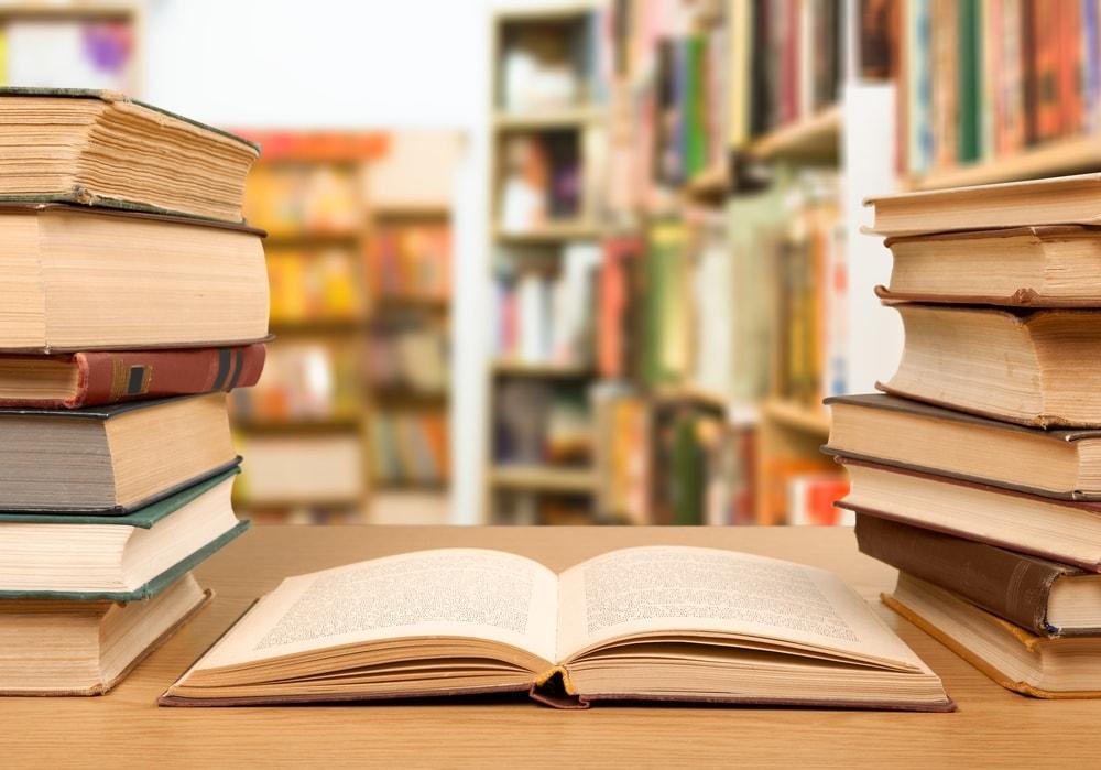 Uno de los grandes divertimentos de la sociedad actual es la lectura literaria